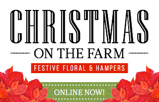 Christmas on the Farm - Festival Florals and Hampers