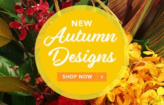 View our Autumn Flowers