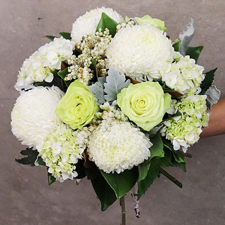 Close Up Pearl White Posy