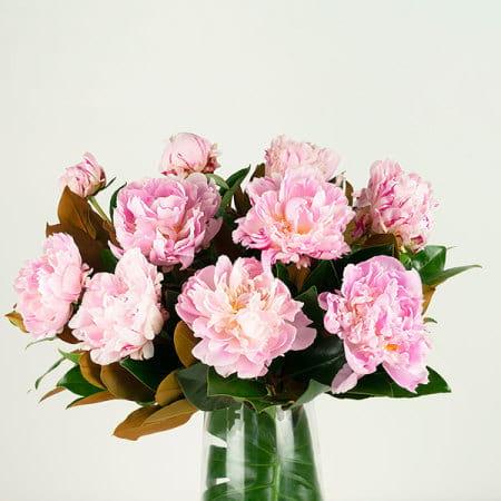 Pink Peony Vase Close Up
