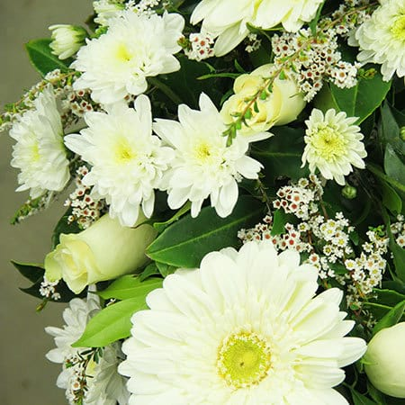 White Gerberas and Rose Funeral Wreath