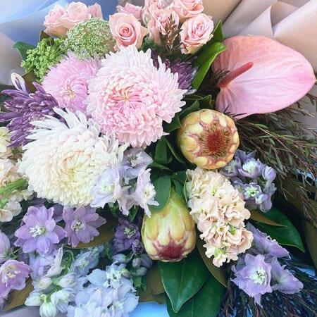 Graceful beauty flowers