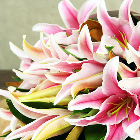 Pink lilies delivered