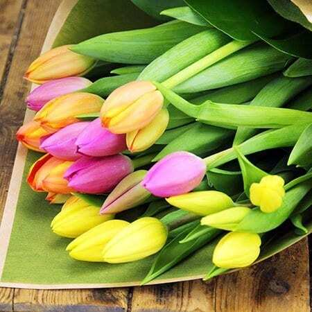 Vibrant Mothers Day Tulips