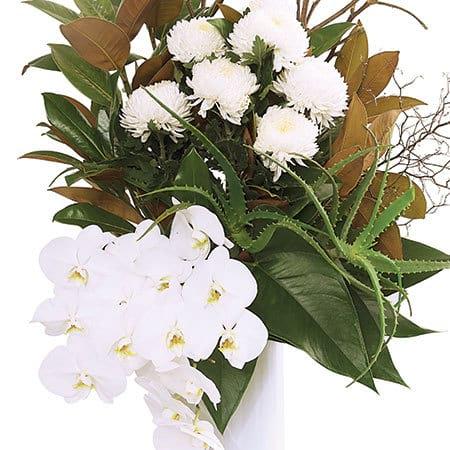 Premium White Vase