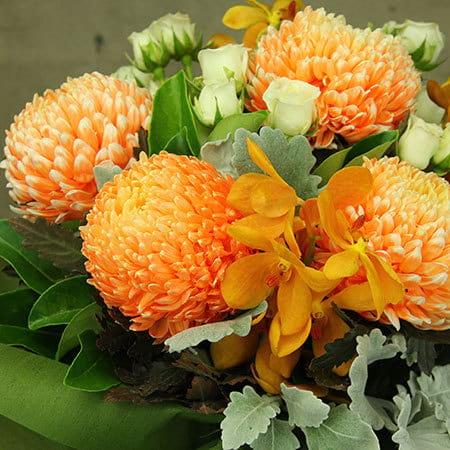 Orange Gelati Flowers
