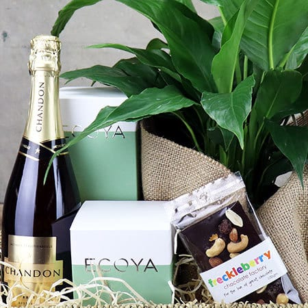 Peace Lily Gift Hamper Delivered