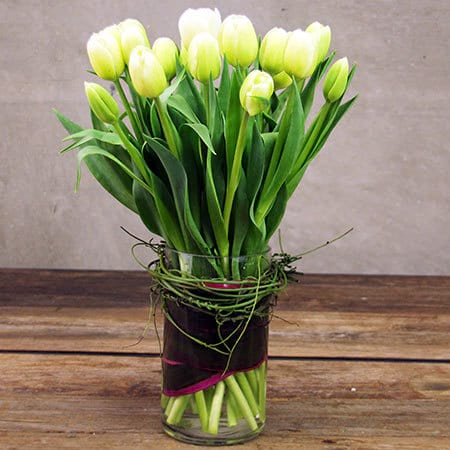 White Tulips Delivered Sydney
