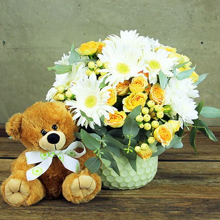 Apricot Flower Pot and Teddy Bear