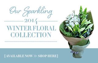 Our Sparkling 2014 Winter Floral Collection
