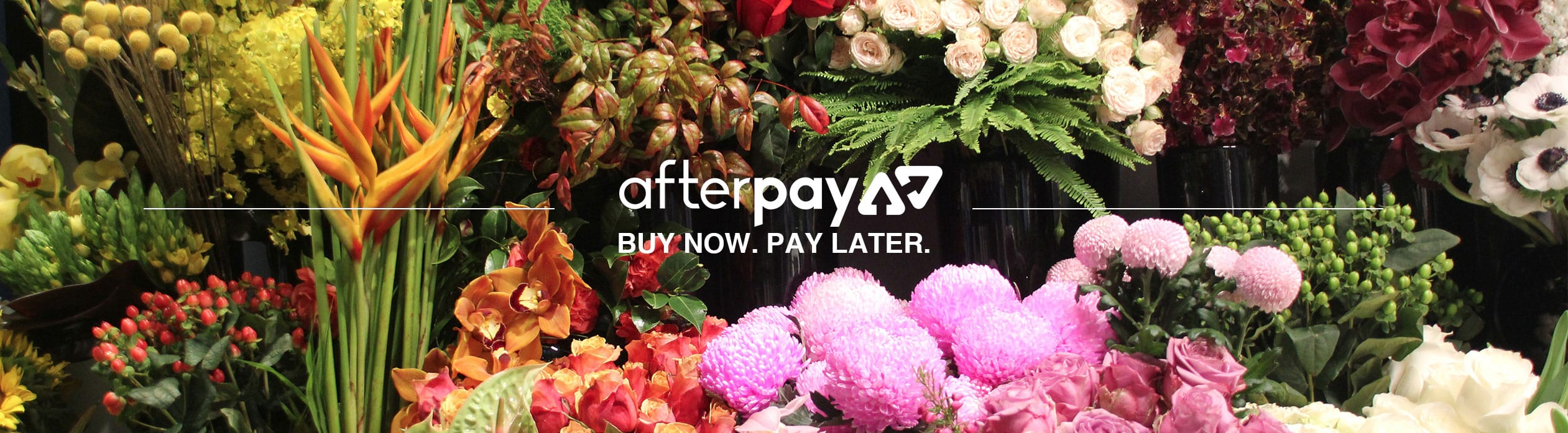 Flowers For Everyone now accepts payments by After Pay.