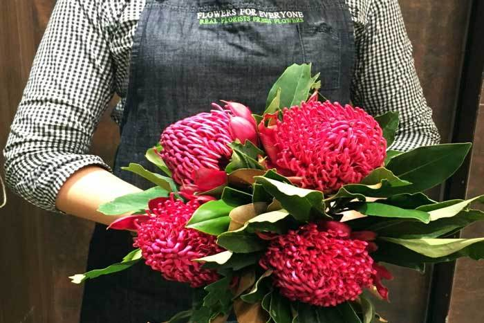 Styling with Waratahs