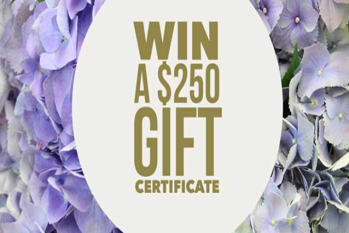 Win a $250 Flowers Gift Voucher!