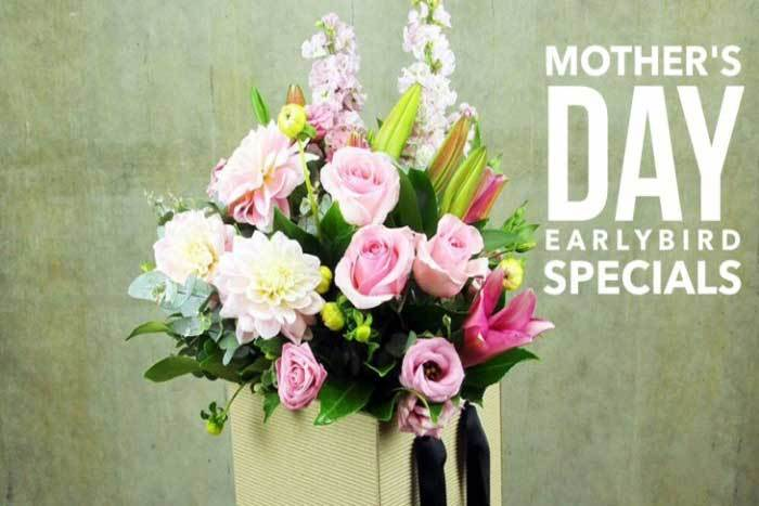 Mothers Day Gift Ideas for Organised Early Birds