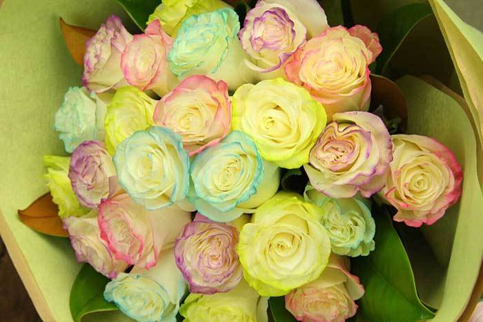 Marshmallow Roses – New & Exclusive to Flowers for Everyone!