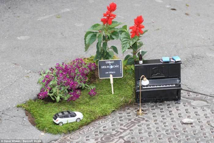 The Pothole Project: Creating Teeny, Tiny Gardens