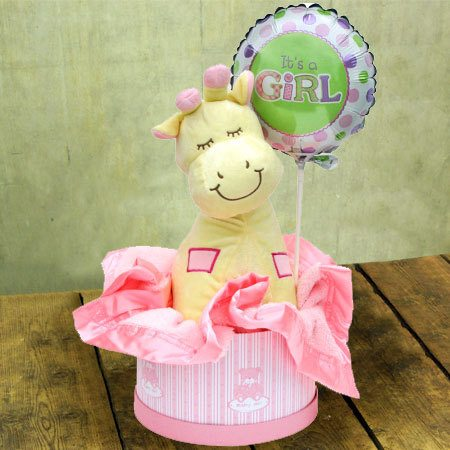 Baby Girl Hamper Small Baby Gift