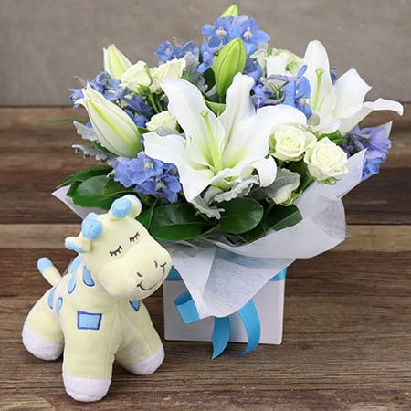 Dreamy Blue Baby Gift