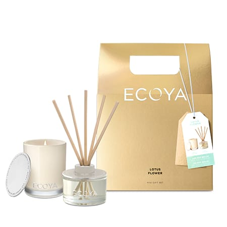 ECOYA Mini Lotus Flower Gift Set (Sydney Only)