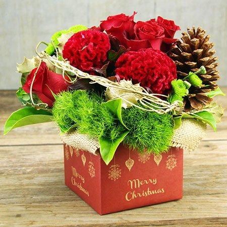 Festive Xmas Box