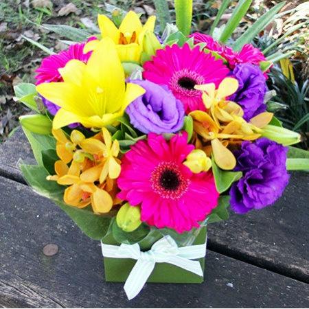 Sydney Flowers Deal Bright