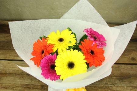 HOS-GERBRIGHTBOU - Gerbera Bright Bouquet