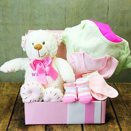 Hug a Bear Baby Hamper (Pink or Blue)