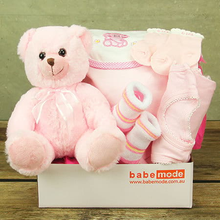 Hug a Bear Baby Hamper