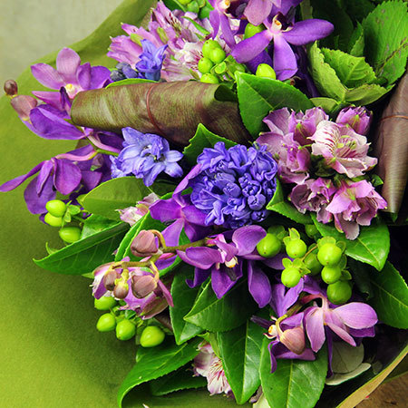 Hyacinth Winter Posy Special Offer