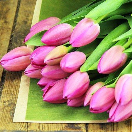 I Heart Tulips (Pretty)