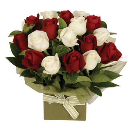 Simply Roses Boxed Arrangement