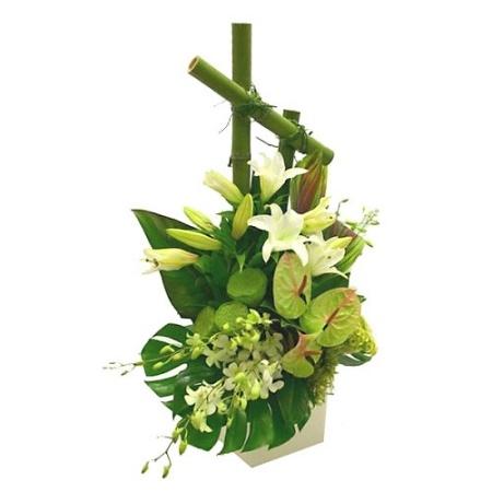 flowers flowersflorists world