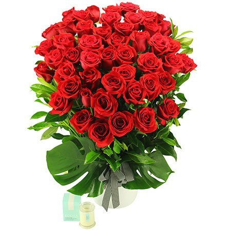 Signora in Red - 48 Long Stem Red Roses (Sydney Only)