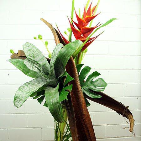 Modern Bromeliad Vase Arrangement