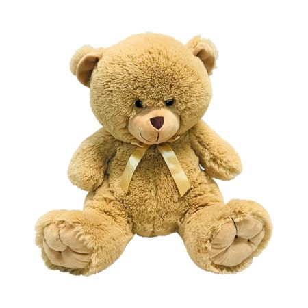 Mr Brown Bear 40cm Delivered