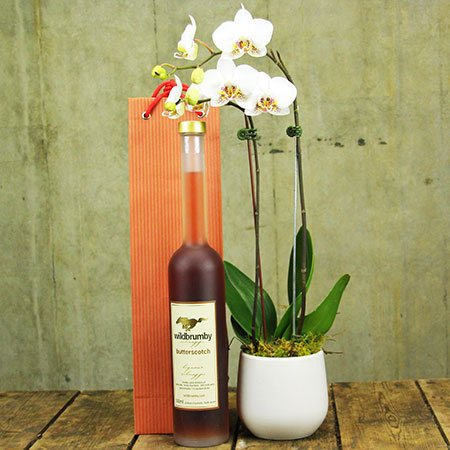 Orchid and Butterscotch Schnapps (Sydney Only)