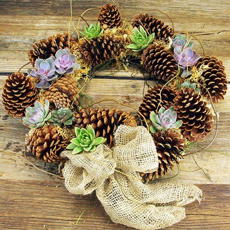 Organic Xmas Wreath (Sydney Only)