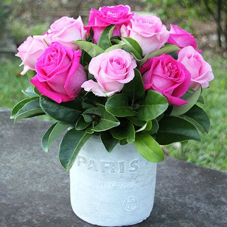 Paris Pink Roses in a White Pot