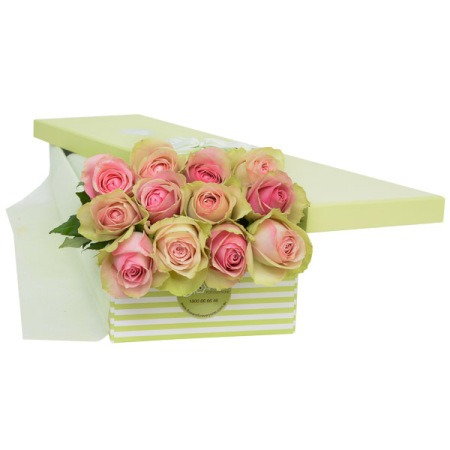 Pink Kisses 12 Roses