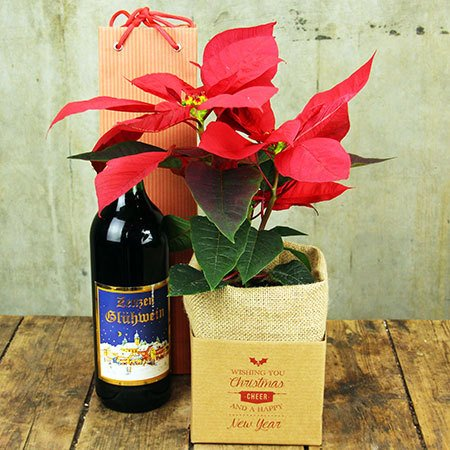 Poinsettia and Aromatic Wine (Sydney Only)