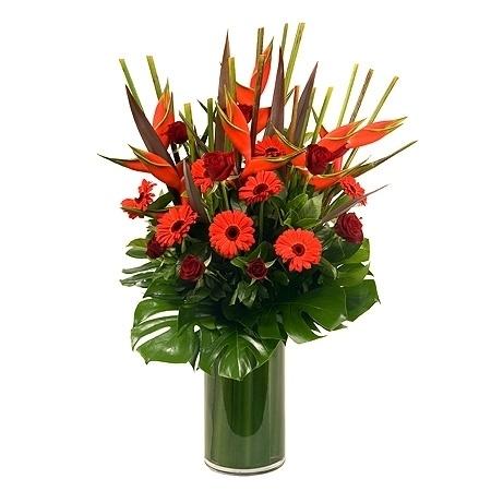 Regal Reds in Vase