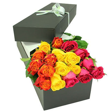 Stunning coloured rose box