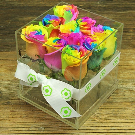 Rainbow Rose Cube Delivered Sydney