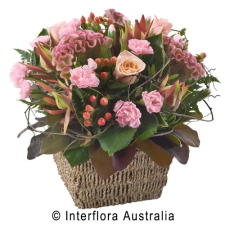 SA62 GENEVIEVE Mixed Seasonal Basket