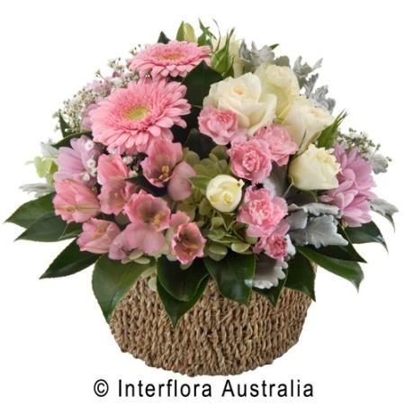 SA73 EVELYN Basket of Mixed Pastel Blooms