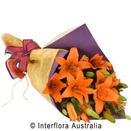 SA78 LOUISA Wrapped Lilies