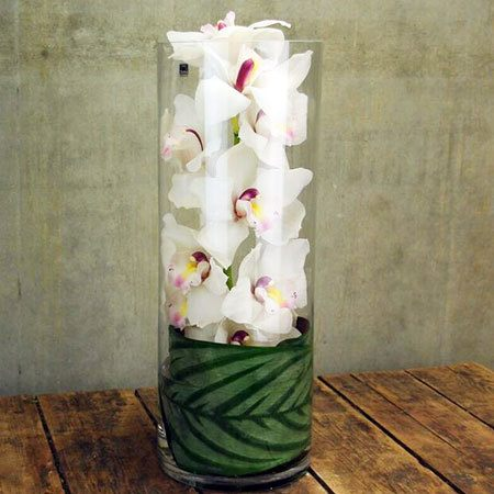 Single Orchid in Vase (Sydney Only)