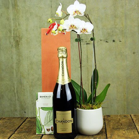 Sparkling Orchid with Free Xmas Candle (Sydney Only)