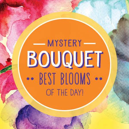 Spring Mystery Bouquet - Florist`s Choice
