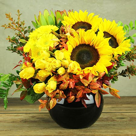 Statement Sunflowers in Bowl Delivered Sydney